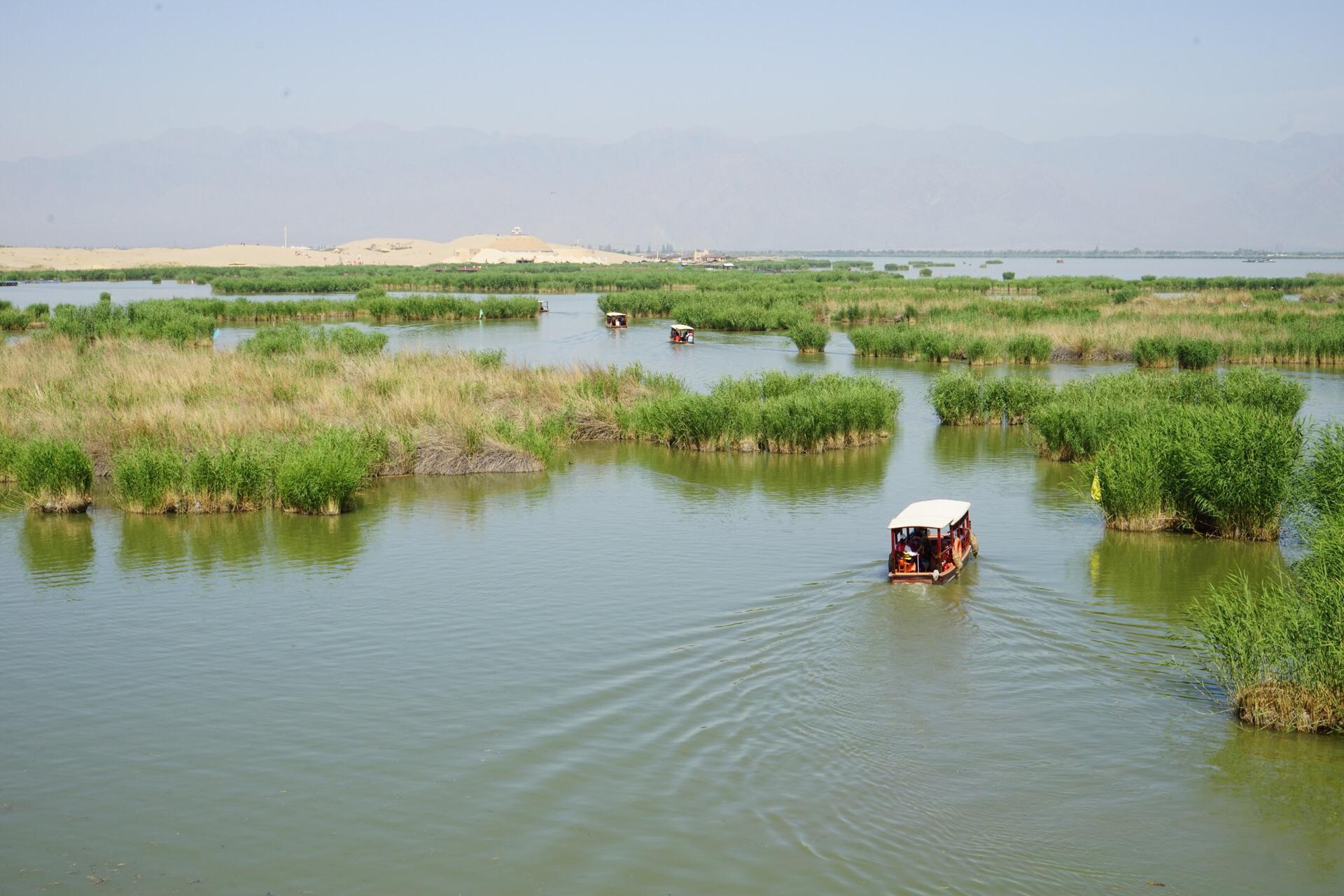 宁夏回族自治区 石嘴山市 平罗县 沙湖生态旅游区