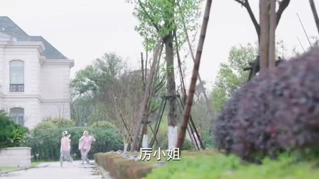 厉薇薇失忆后,竟再次对陈亦度一见钟情,陈亦度开心的要飞