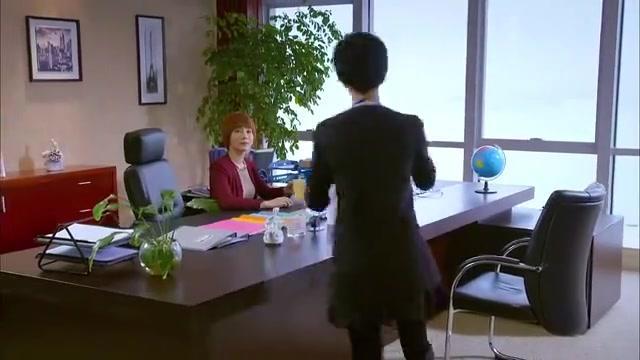 谈判冤家:罗铮铮突然献上户口本,公司求婚乔楚私定终身