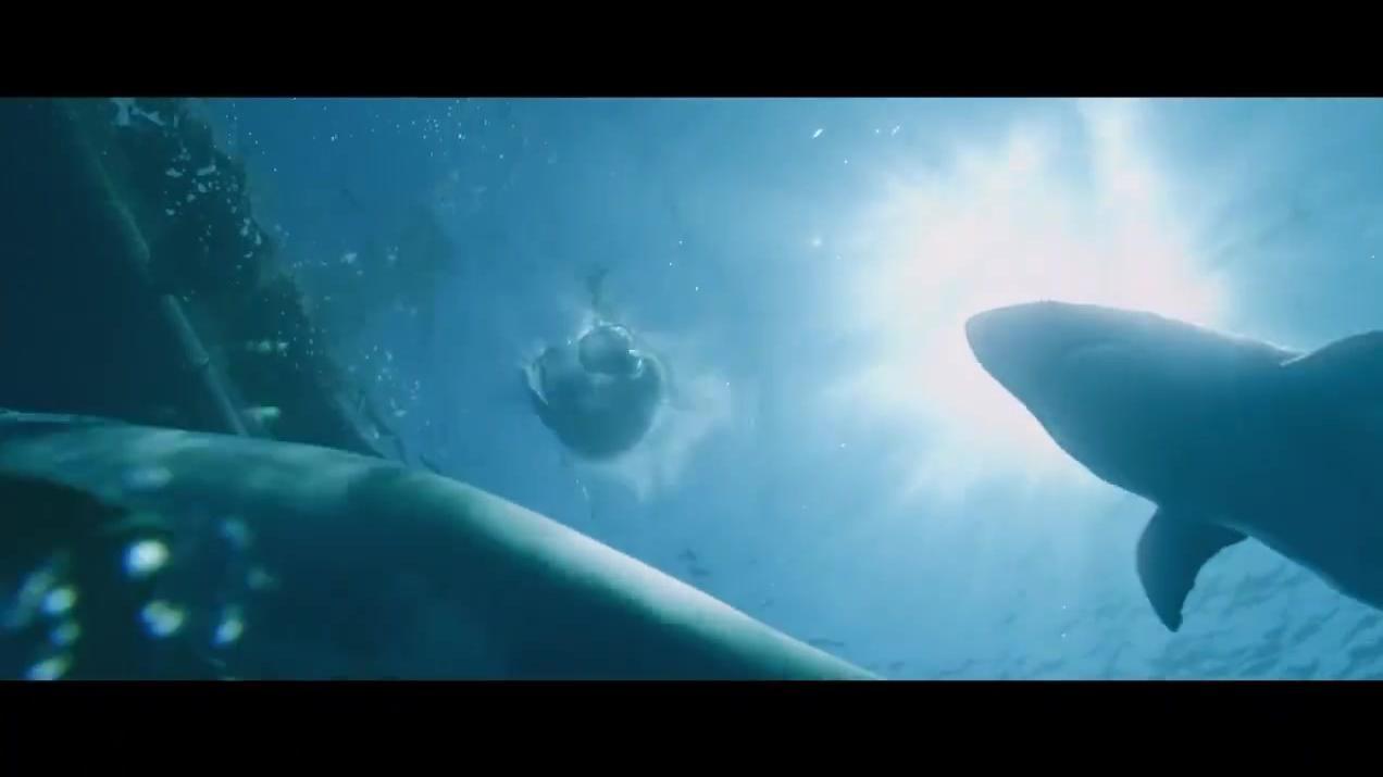 大叔脚滑掉进海里,可海里有好几只鲨鱼,就在他旁边游来游去