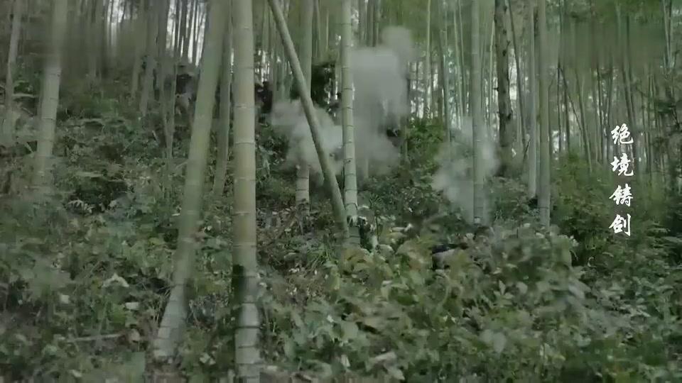 小伙在树林里大喊一声,谁知众多枪支朝他开枪