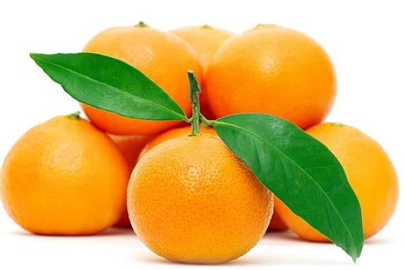柑橘抢早上市卖价高,着色好、糖度高用调节剂还是叶面肥好?