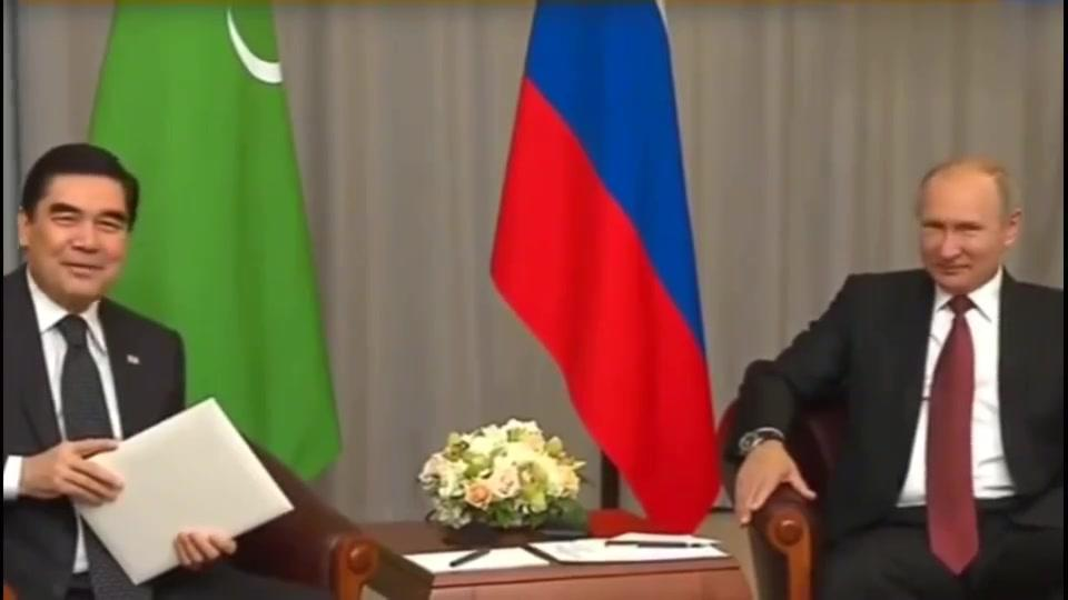 普京:土库曼斯坦总统赠送普京总统一条阿拉拜牧羊犬