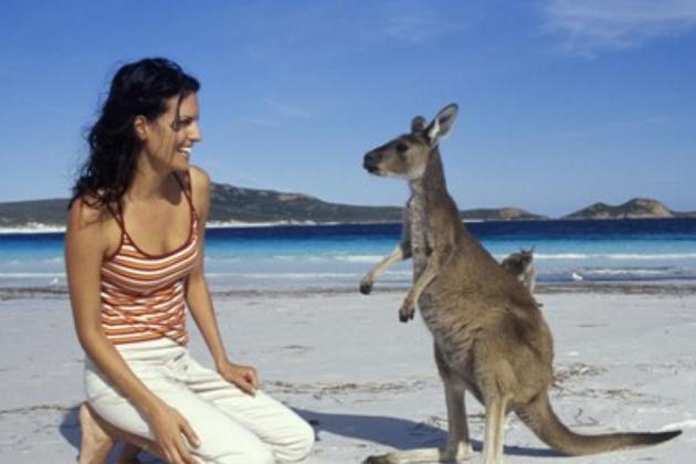 澳大利亚是高度发达国家,为何很少听到它的工业品牌?这就是原因