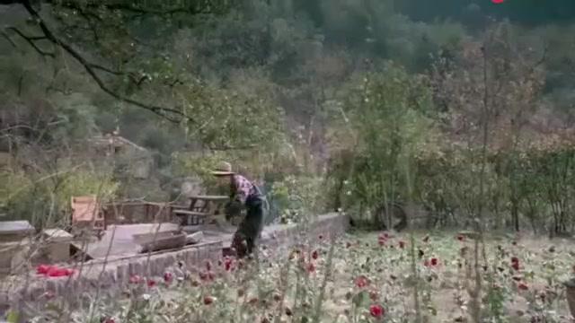 鸡毛飞上天:玉珠江河退休后,天天为鸡毛蒜皮小事吵架,太逗了