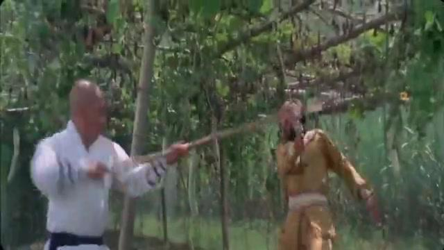没想到武功高手,被瓜藤给击败了,对手太鸡贼