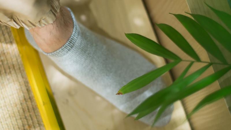 用非洲辣木树做的袜子,4周后消失不见?