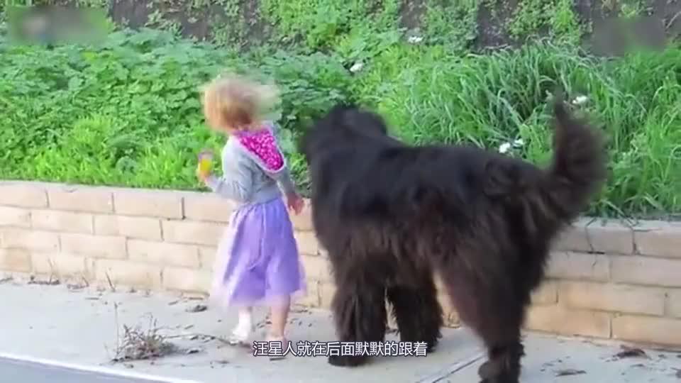 小女孩儿出门玩耍时带着凶悍汪星人保镖妈妈再也不用害怕危险了