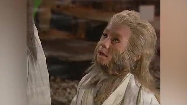 小猴子学长生不老术,被祖师带到无极境界,竟然看到这种东西