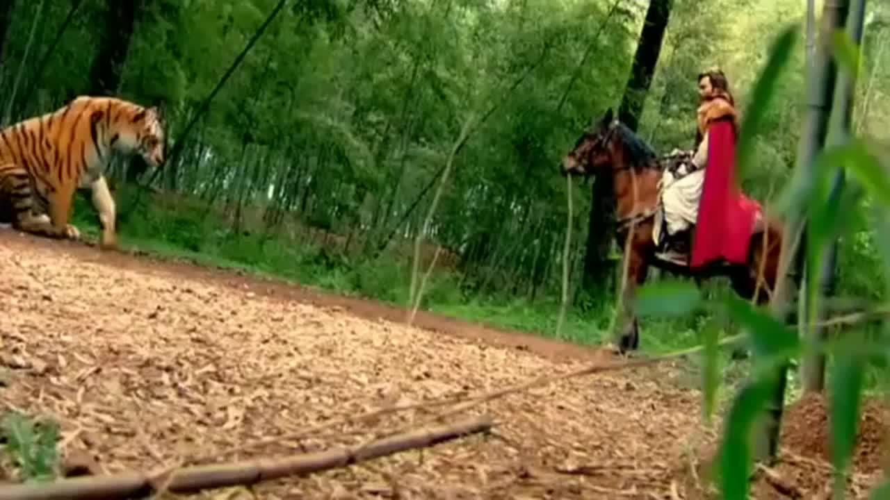 男子被人追杀,不料一吹口哨,突然出现一只老虎,坏人好惨!
