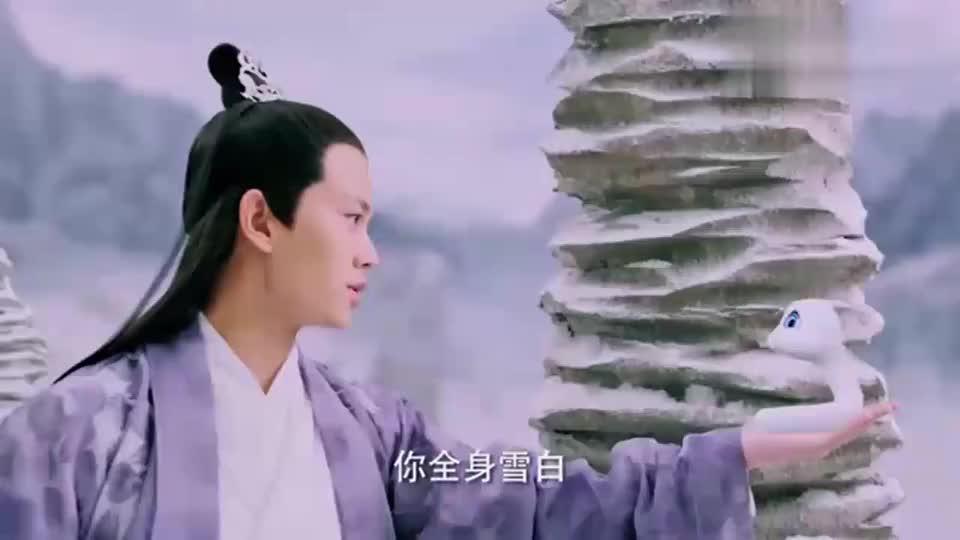 白蛇传说面对凌楚的不依不饶紫宣先护住了小白还让她钻到自己怀里