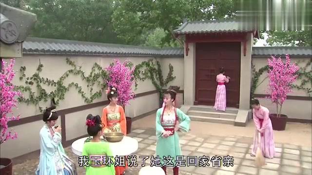 杨玉华回家省亲,让谢阿蛮先打个报道,可是她却没把事说清楚