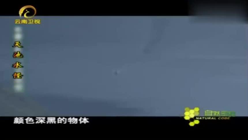 曾经报道的天池水怪,在高倍摄像机下显露真身!