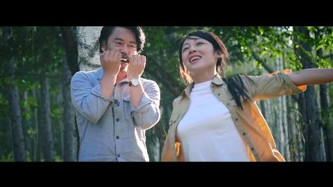 李健杨扬申雪赵宏博等众多明星联袂演绎这曲《我在黑龙江等你》
