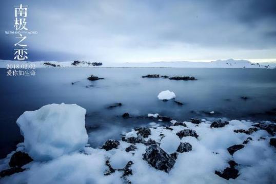 《南极之恋》爱与人性相纠缠,诞生了一段可歌可泣的感情