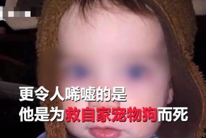 1岁幼儿重返火场救宠物狗不幸遇难,网友:大概上帝喜欢这个灵魂