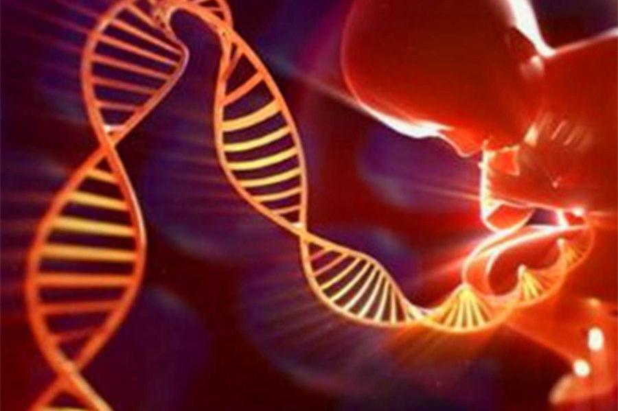 """这五种遗传病""""传男不传女"""",备孕前建议夫妻双方都检查一下"""