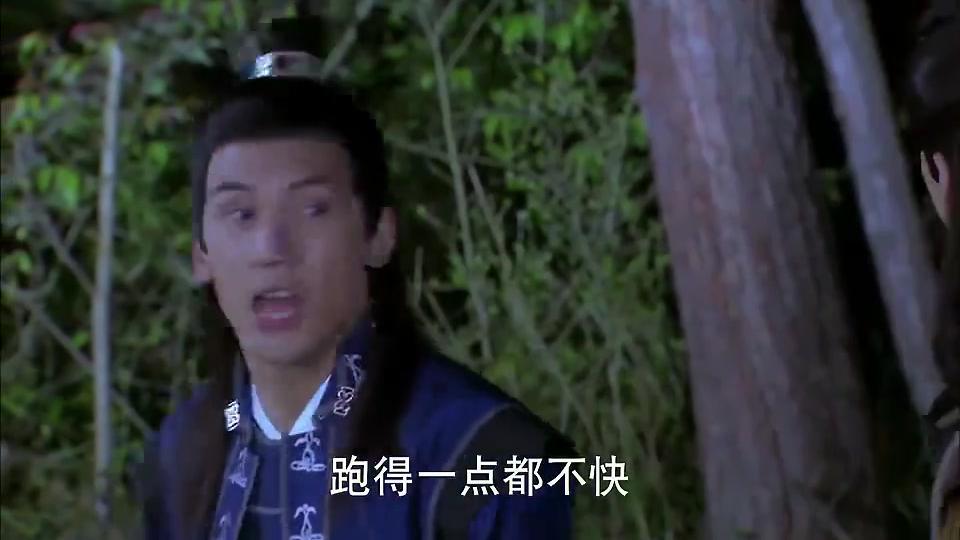 天天有喜:独角仙跟乌龟比脚力,结果两人双双入坑,笑死我了