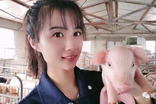 产房的饲养管理专题(乳猪拉稀和寄养管理)猪知乐
