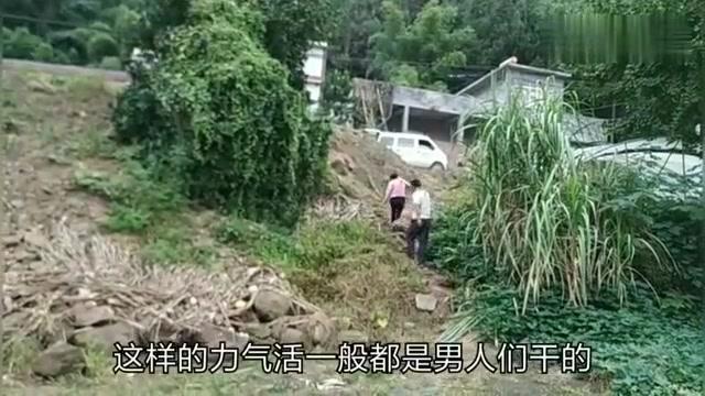 四川农村女汉子和丈夫在河边抬石头,不知道怎么突然摔倒在地,痛