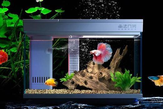 小米有品上架AI智能模块化鱼缸 一款真正的懒人鱼缸
