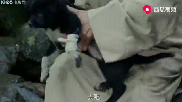 影视:几百年前的医生,竟知道用石灰石消毒,中华文化博大精深