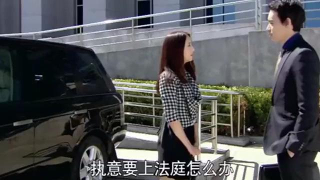 恋恋不忘:探视权的案子赢了,吴桐和向峻高兴的不行了,开心