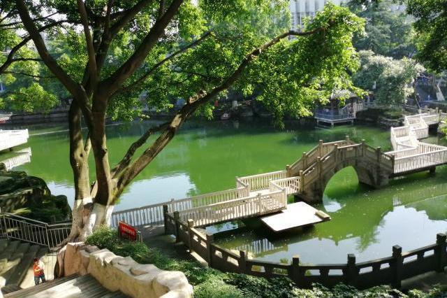 重庆渝北一个微型公园:像极了古代大户后花园,如今成老年人最爱
