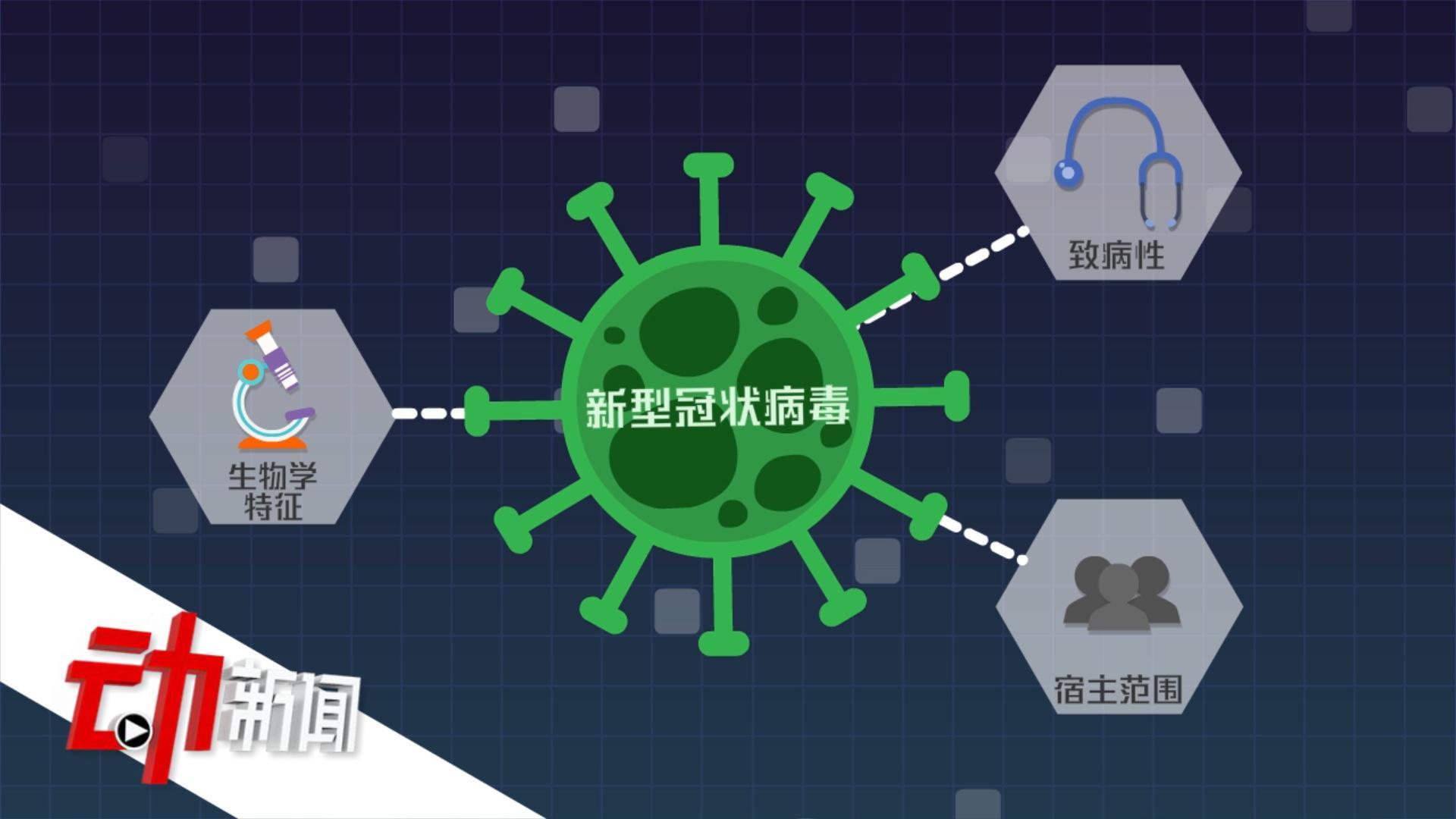 新冠病毒与SARS冠状病毒同组不同种 动画科普两者有啥区别?