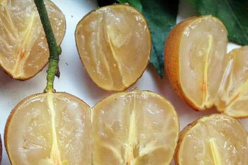"""七月份多吃""""此果"""",20元一斤,晚上吃几颗,排出宿便祛色斑!"""