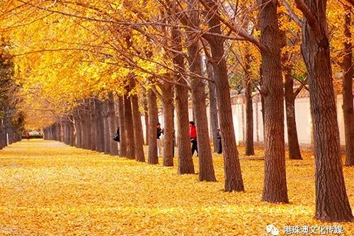 原创散文《秋日上堡行》王瑞峰