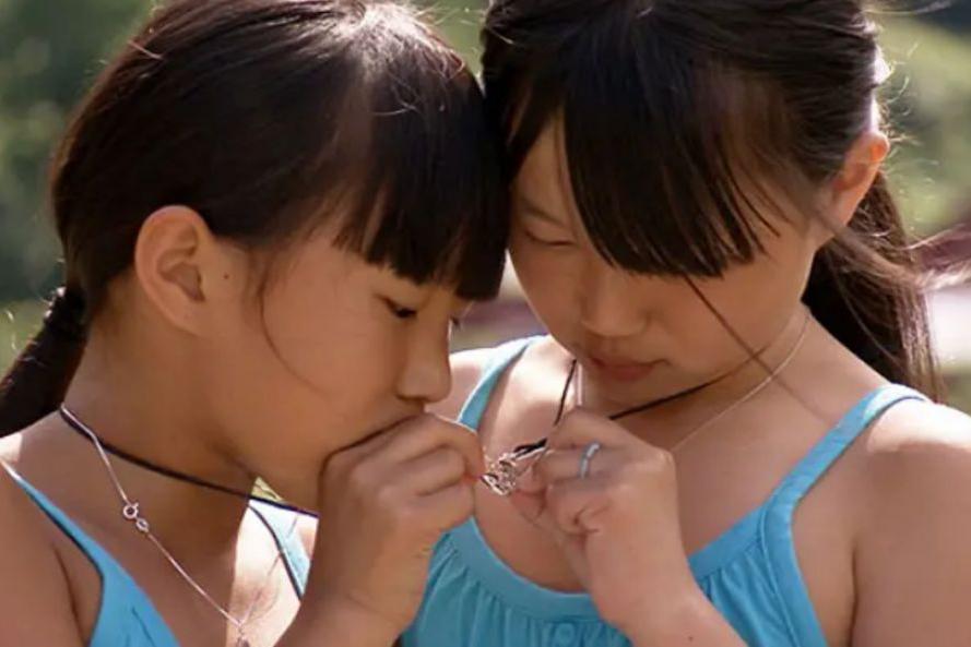 中国弃婴双胞胎,分别被异国家庭领养后重逢,这部豆瓣8.9看哭我