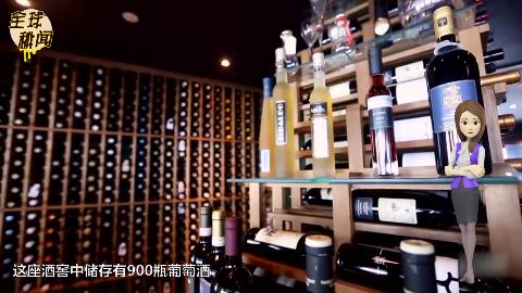 全球最高酒窖储存900瓶葡萄酒网友闻闻味就醉了