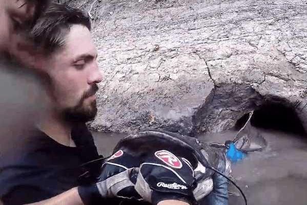 男子河边钓鱼发现浸水坑洞, 没想到最后捞出奇怪扁嘴生物