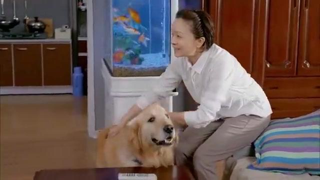 儿子在丈母娘家吃不饱,一回家还跟宠物狗抢吃的,亲妈无语了