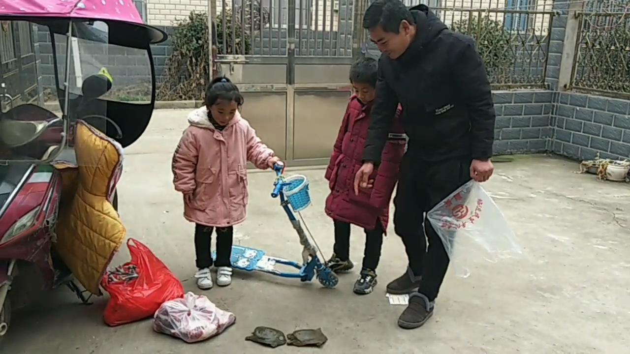 安徽阜阳农村送年礼买啥?两只甲鱼、割肉买鸡600元少不?