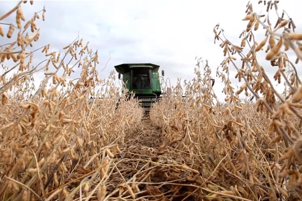 大片农田闲置,美国大豆库存达7.55亿蒲式耳!东南亚这国或买下?