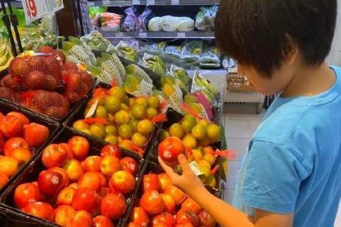 陈若仪外出,林志颖负责带娃顾家,不会挑水果向十岁Kimi求助