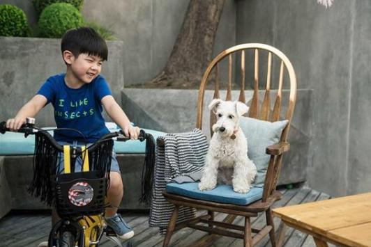 《狗眼看人心》 一部讲述了中产阶级家庭与狗的故事