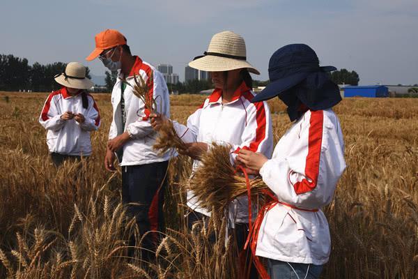 涉农高校大学生就业前景如何,怎么样提升对农类专业认同感?