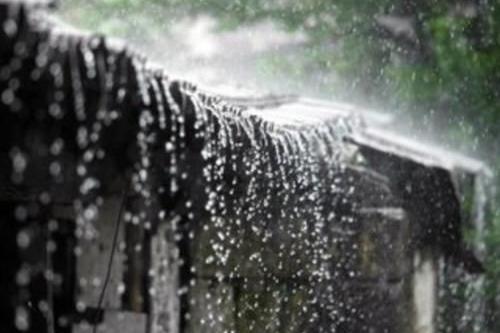 """一年中330天在下雨,降水量高达一万毫米,被称为""""世界湿极"""""""