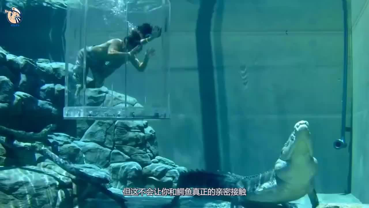 世界上最危险的泳池老外亲测隔着屏幕都害怕