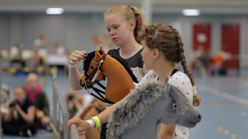 不是你以为的沙雕比赛:芬兰举行了世界上最大的业余马术比赛