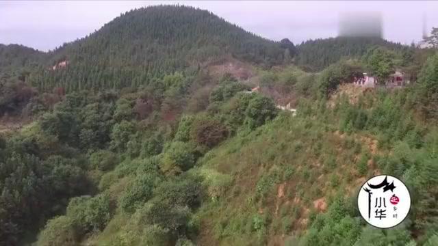 贵州海拔1200米深山一户人家,办酒席人山人海,水泥路通到家门口