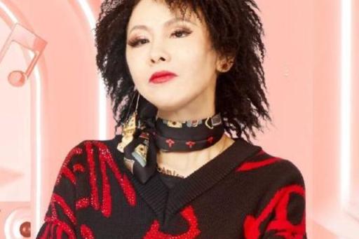 红了28年的她,曾在《歌手》被迫退赛,现在以新人复出参加选秀