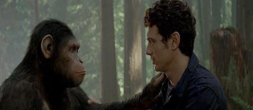 囧哥:动物园猴子竟集体逃跑了