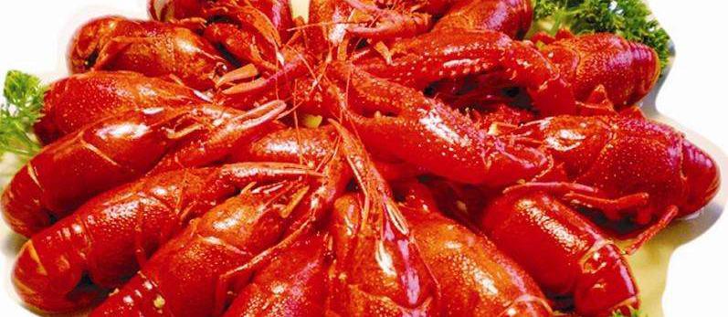 囧哥:新西兰放回一百多吨龙虾