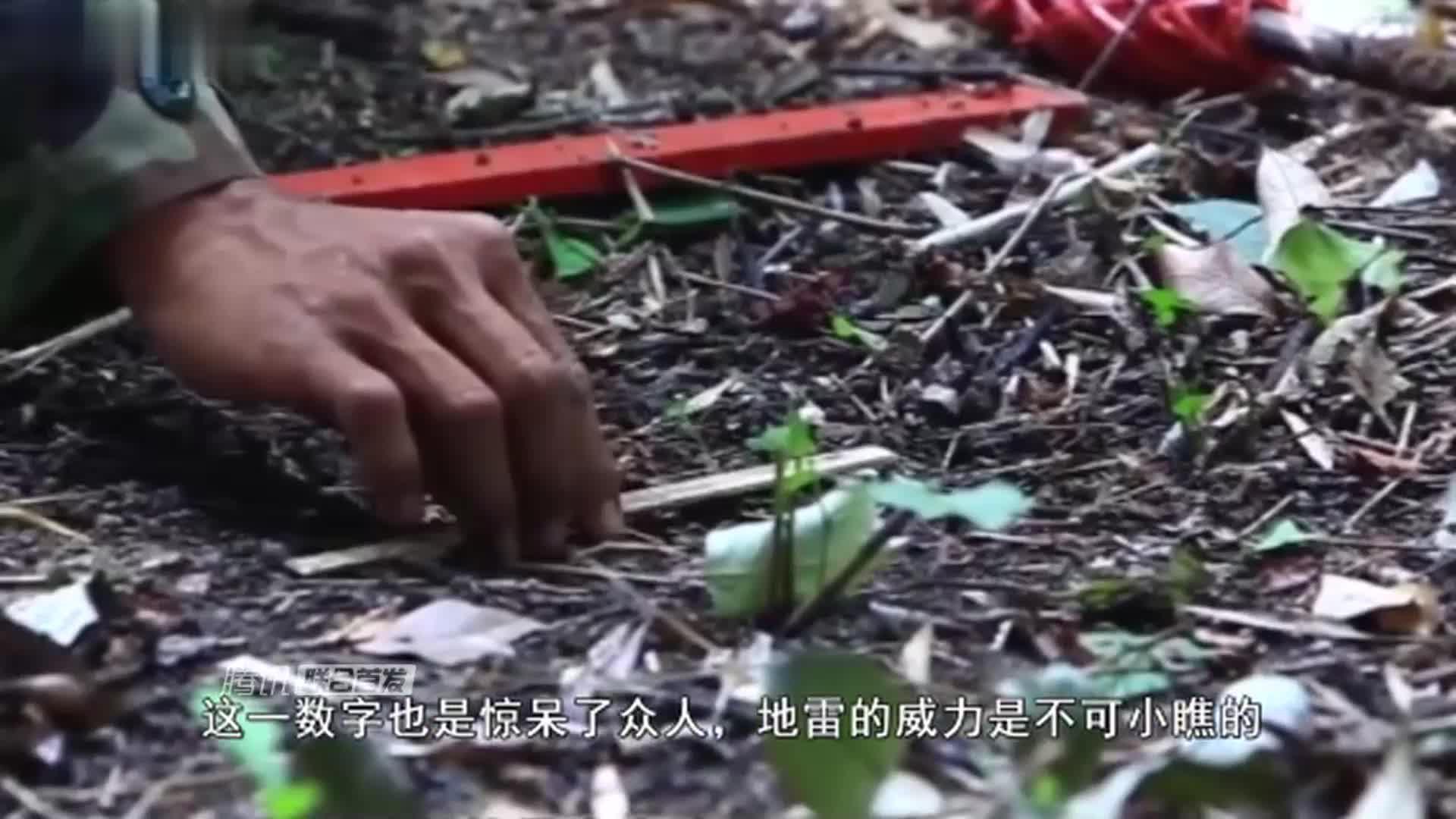 蒲公英扫雷神器电视剧中的扫雷装置被秒杀网友厉害