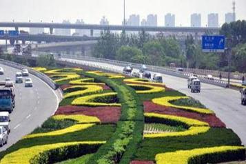 为什么中国城市的街道会建设绿化带,而在欧洲国家却看不到呢?