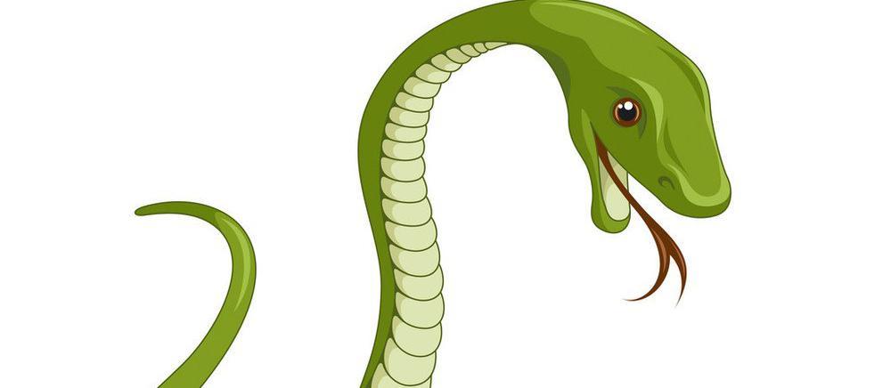 囧哥:小伙报警称蛇钻进裤裆